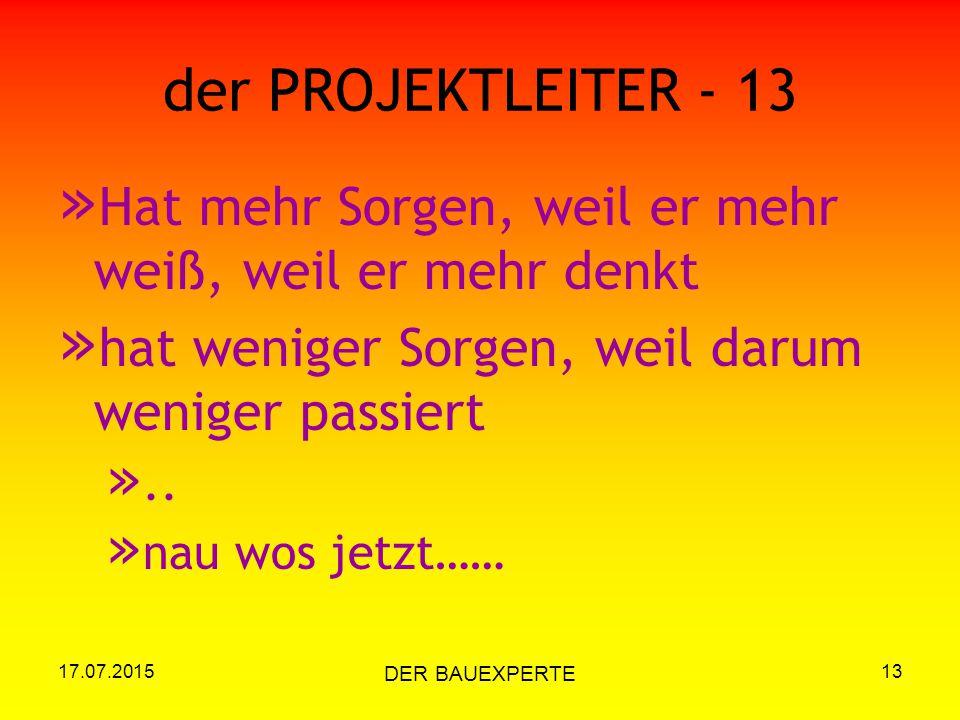 17.07.2015 DER BAUEXPERTE 13 der PROJEKTLEITER - 13 » Hat mehr Sorgen, weil er mehr weiß, weil er mehr denkt » hat weniger Sorgen, weil darum weniger