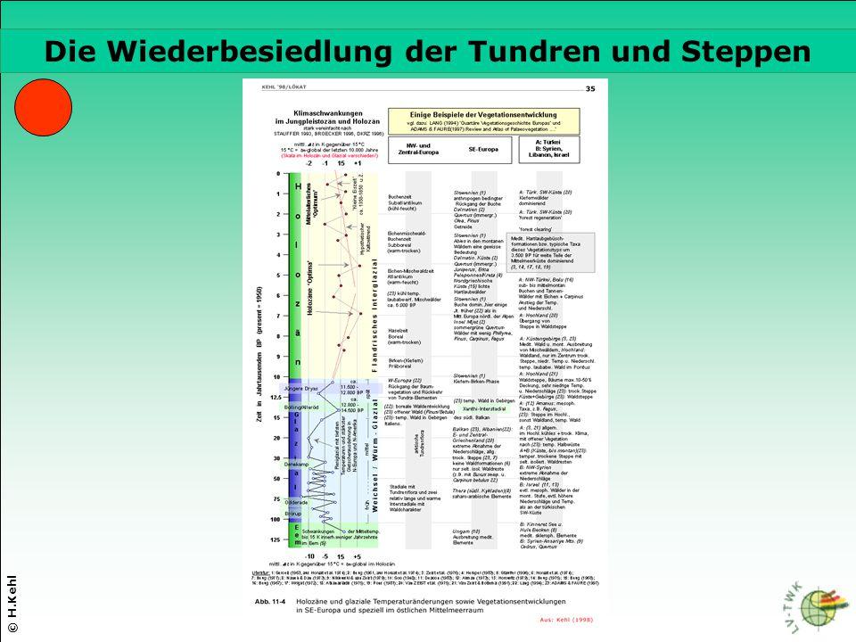© H.Kehl Die drei wichtigsten Parameter Die Wiederbesiedlung der Tundren und Steppen