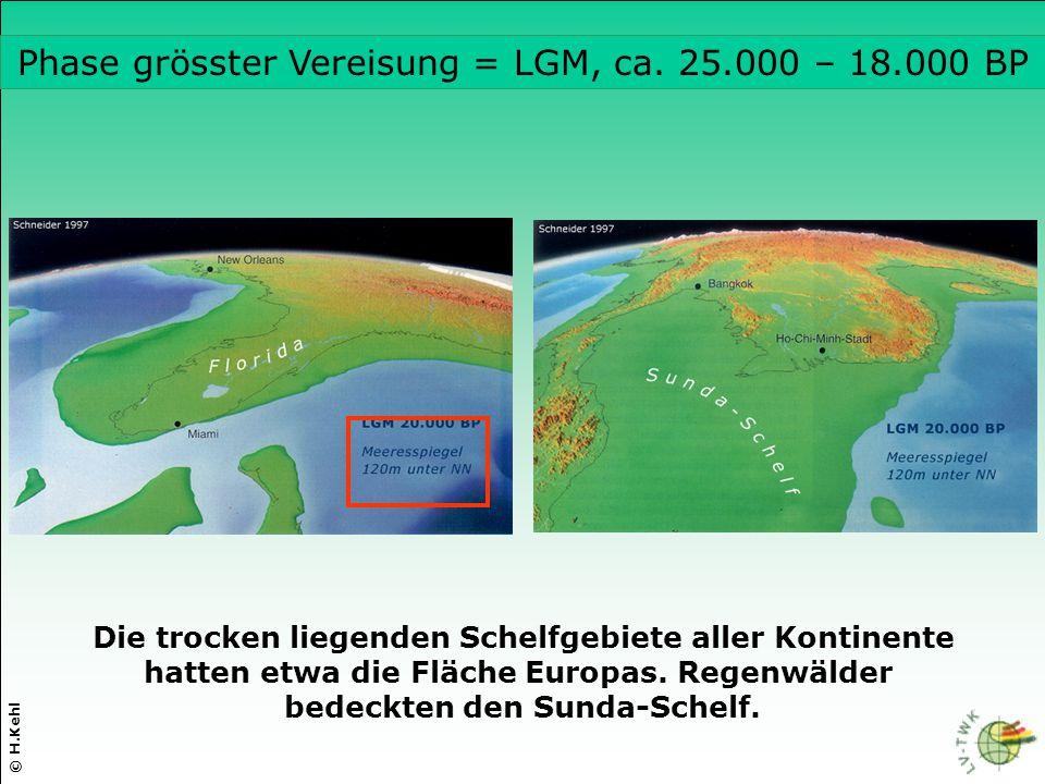 Die trocken liegenden Schelfgebiete aller Kontinente hatten etwa die Fläche Europas. Regenwälder bedeckten den Sunda-Schelf. © H.Kehl Phase grösster V