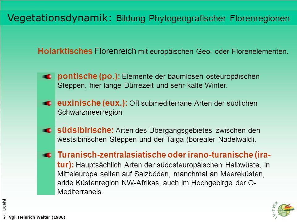 © H.Kehl pontische (po.): Elemente der baumlosen osteuropäischen Steppen, hier lange Dürrezeit und sehr kalte Winter. euxinische (eux.): Oft submedite