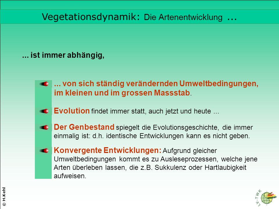 © H.Kehl... ist immer abhängig,... von sich ständig verändernden Umweltbedingungen, im kleinen und im grossen Massstab. Evolution findet immer statt,