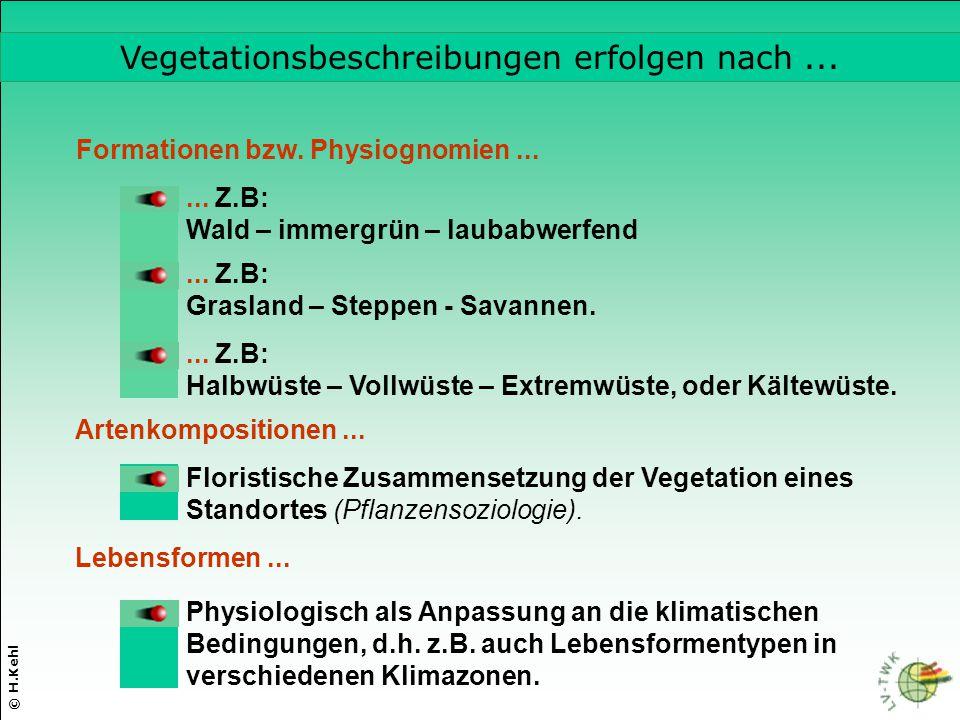 © H.Kehl Formationen bzw. Physiognomien...... Z.B: Wald – immergrün – laubabwerfend... Z.B: Grasland – Steppen - Savannen.... Z.B: Halbwüste – Vollwüs