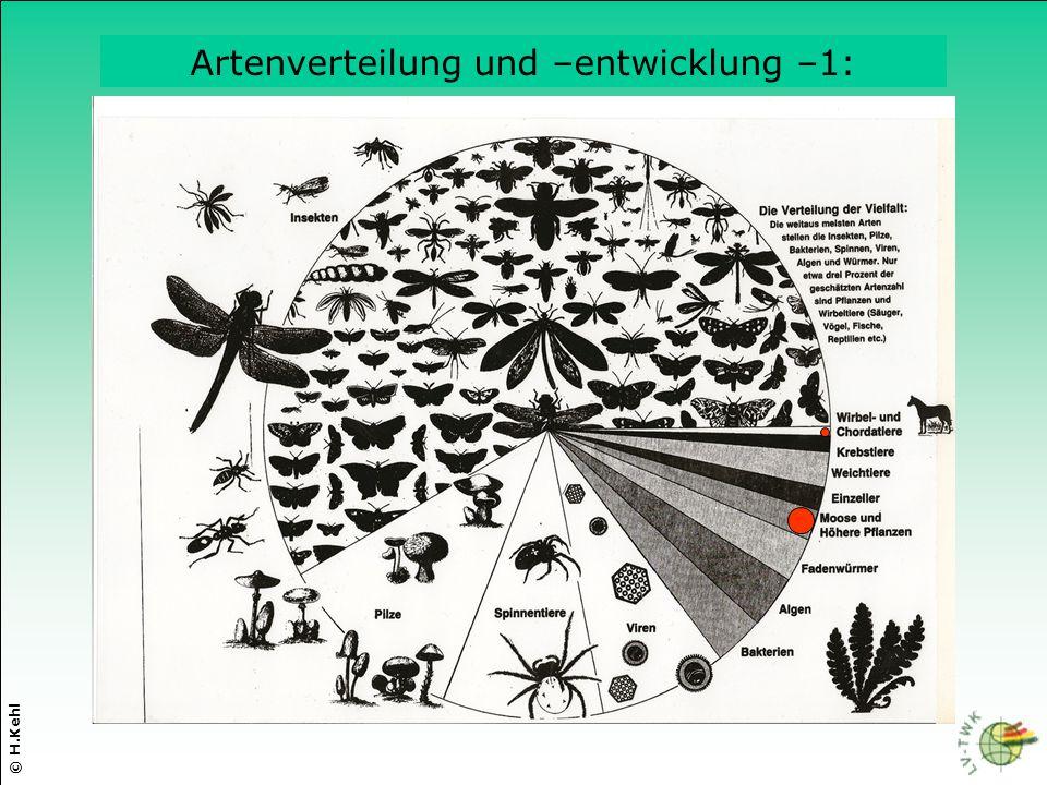 © H.Kehl Artenverteilung und –entwicklung –1: