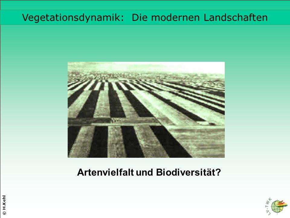 © H.Kehl Vegetationsdynamik: Die modernen Landschaften Artenvielfalt und Biodiversität?