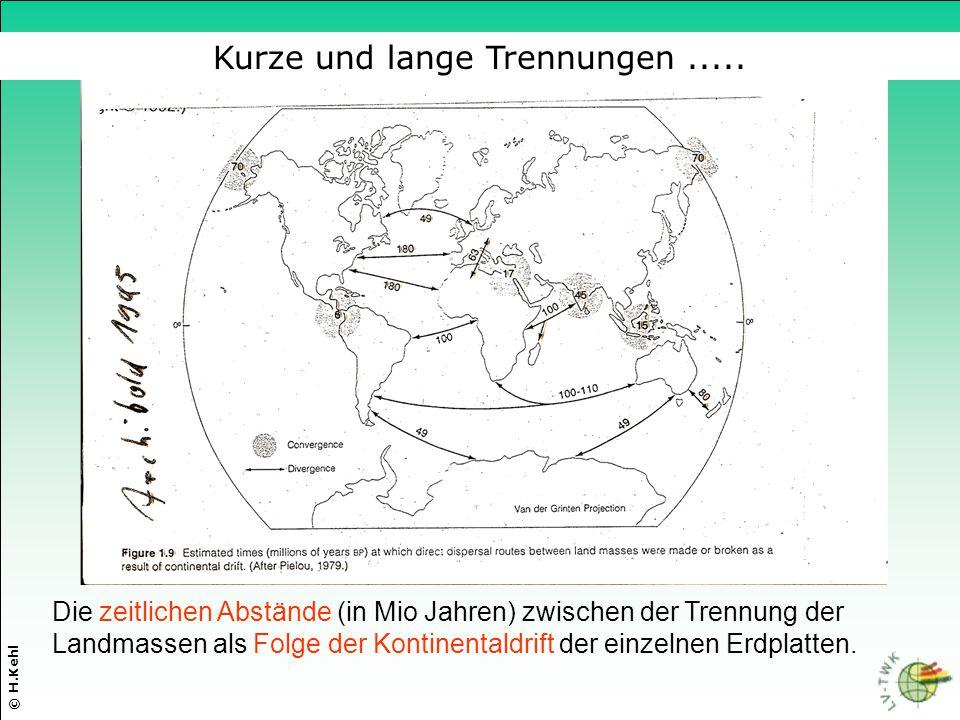 Die zeitlichen Abstände (in Mio Jahren) zwischen der Trennung der Landmassen als Folge der Kontinentaldrift der einzelnen Erdplatten. © H.Kehl Kurze u