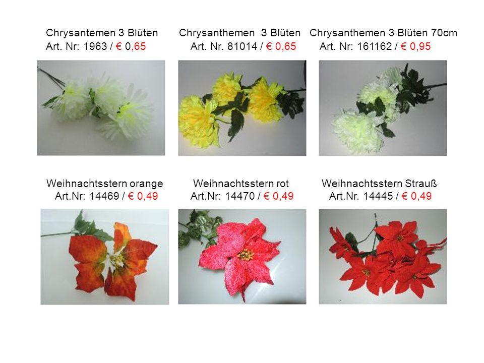 Chrysantemen 3 Blüten Chrysanthemen 3 Blüten Chrysanthemen 3 Blüten 70cm Art. Nr: 1963 / € 0,65 Art. Nr. 81014 / € 0,65 Art. Nr: 161162 / € 0,95 Weihn