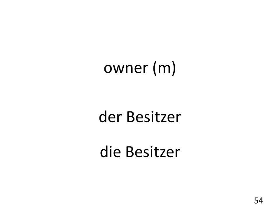 owner (m) der Besitzer die Besitzer 54