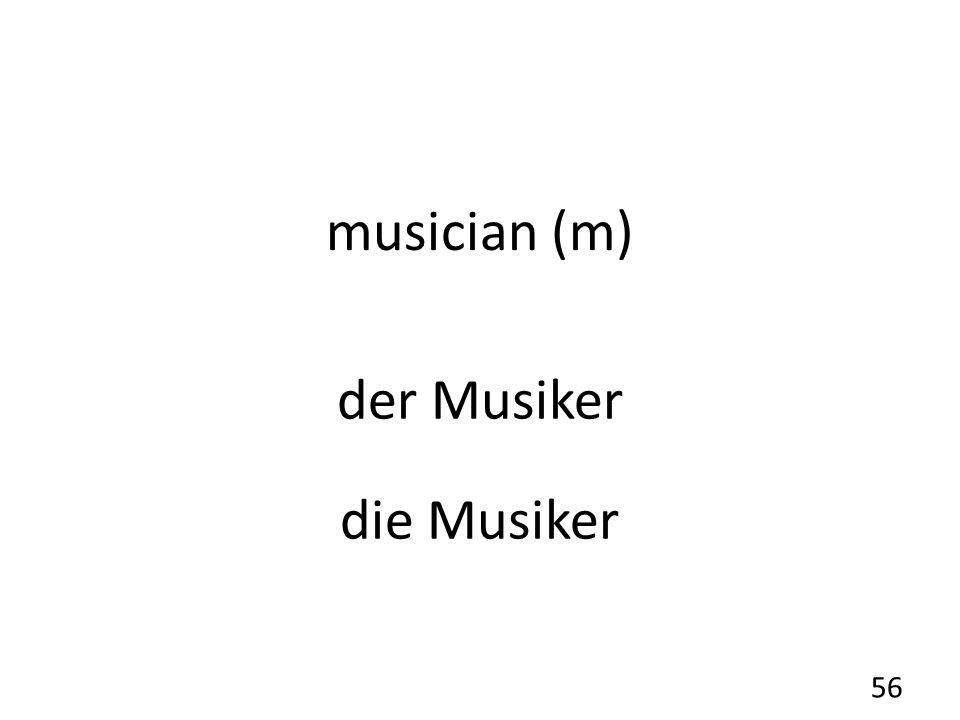 musician (m) der Musiker die Musiker 56