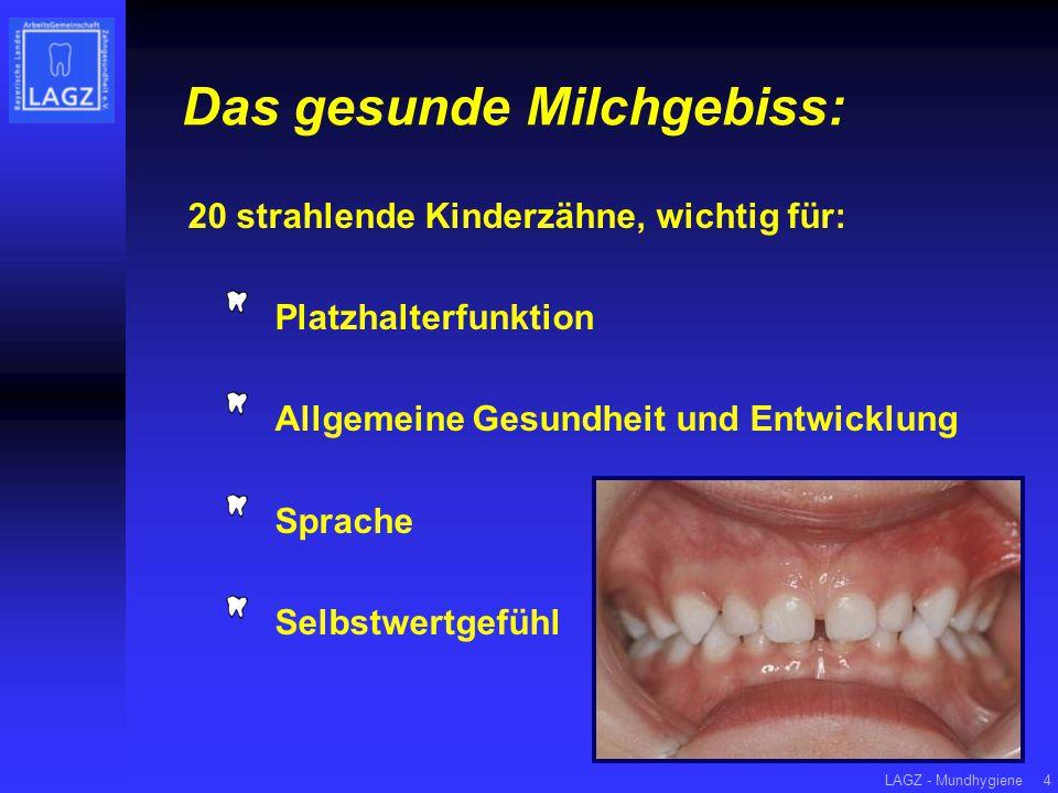 LAGZ - Mundhygiene4 Das gesunde Milchgebiss: 20 strahlende Kinderzähne, wichtig für: Platzhalterfunktion Allgemeine Gesundheit und Entwicklung Sprache Selbstwertgefühl