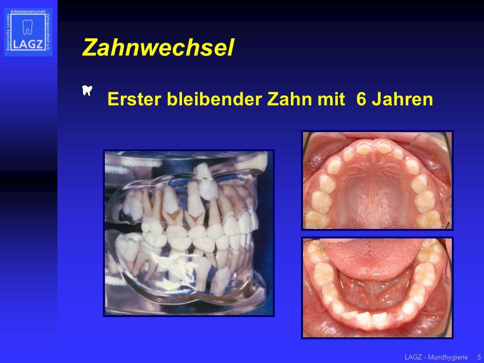 LAGZ - Mundhygiene6 MundhygieneFluoridierungErnährungZahnarzt Gesunde Zähne ein Leben lang.