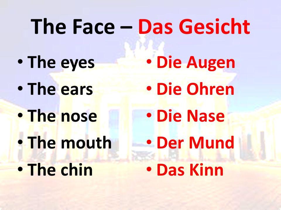 The Face – Das Gesicht The eyes The ears The nose The mouth The chin Die Augen Die Ohren Die Nase Der Mund Das Kinn