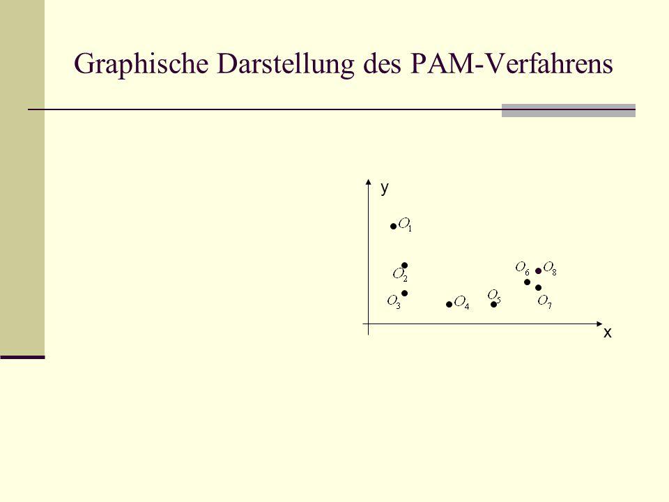 Graphische Darstellung des PAM-Verfahrens x y
