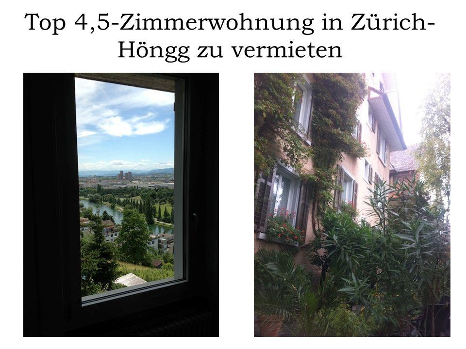 Top 4,5-Zimmerwohnung in Zürich- Höngg zu vermieten