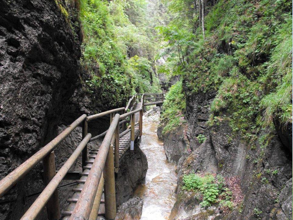 Den Höhenunterschied von der Teichalm zum Murtal überwindet der Mixnitzbach in der Bärenschützklamm, in der man als Wanderer über insgesamt 164 Leiter