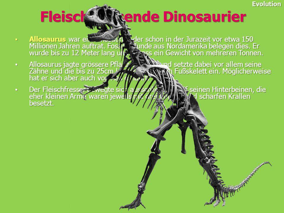 Allosaurus war ein Dinosaurier, der schon in der Jurazeit vor etwa 150 Millionen Jahren auftrat.