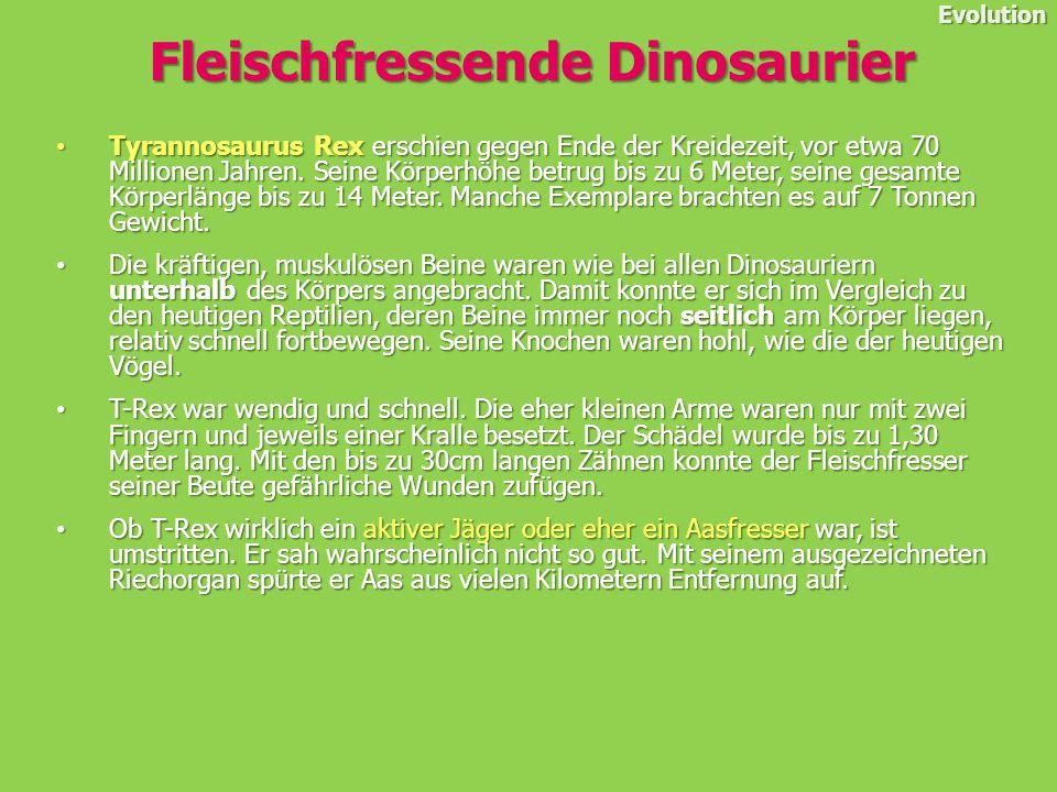 Tyrannosaurus Rex erschien gegen Ende der Kreidezeit, vor etwa 70 Millionen Jahren.