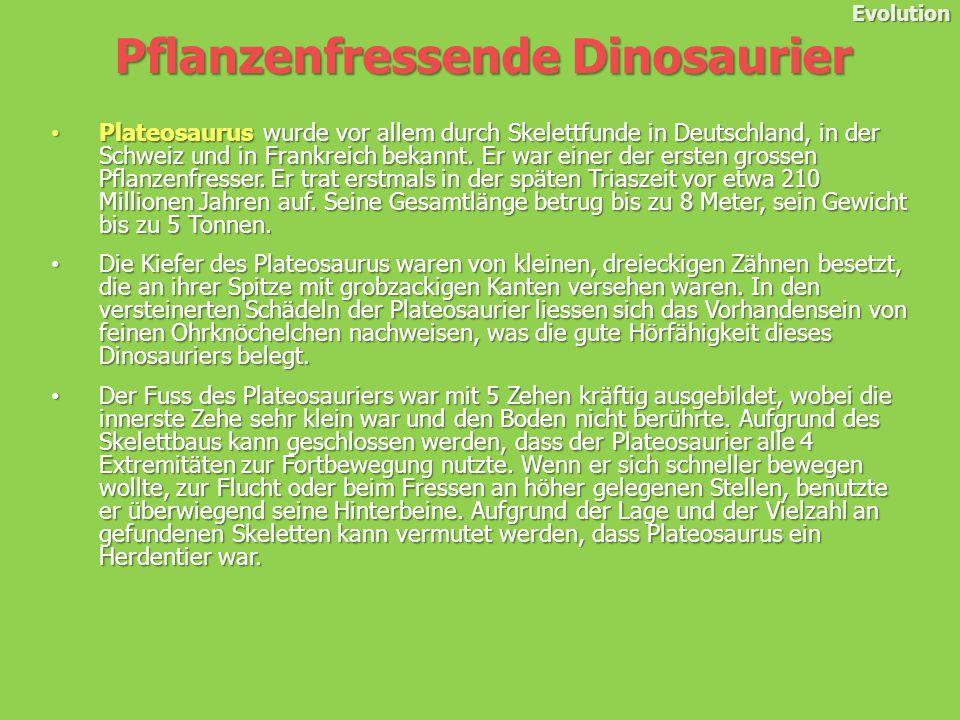 Evolution Plateosaurus wurde vor allem durch Skelettfunde in Deutschland, in der Schweiz und in Frankreich bekannt.