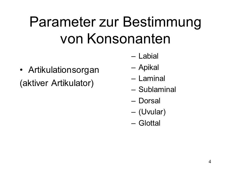 3 Parameter zur Bestimmung von Konsonanten Artikulationsstelle (passiver Artikulator) –Bilabial –Labiodental –Dental –Alveolar –Postalveolar –(Retroflex) –Palatal –Velar –Uvular –Pharyngal –Glottal