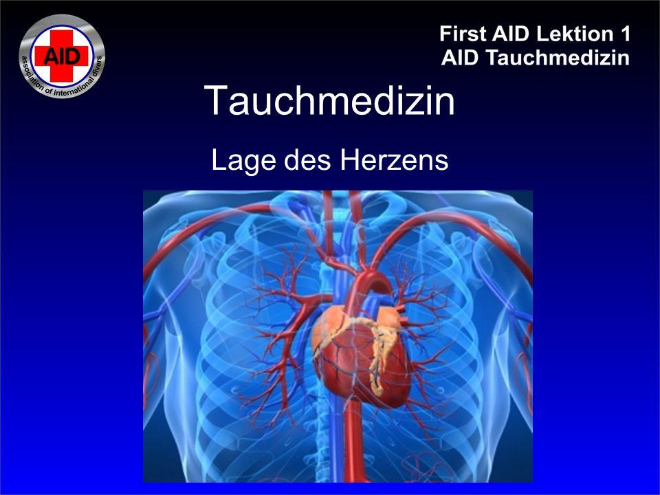 Tauchmedizin Lage des Herzens