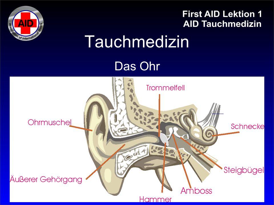 Tauchmedizin Symptome: Atemnot Schmerzen im Brustkorb Hustenanfälle bläuliche Haut (Zeichen von O 2 -Mangel) Hautknistern Schocksymptome Lähmungen, neurologische Ausfälle, Bewußtlosigkeit Lungenüberdruckunfall