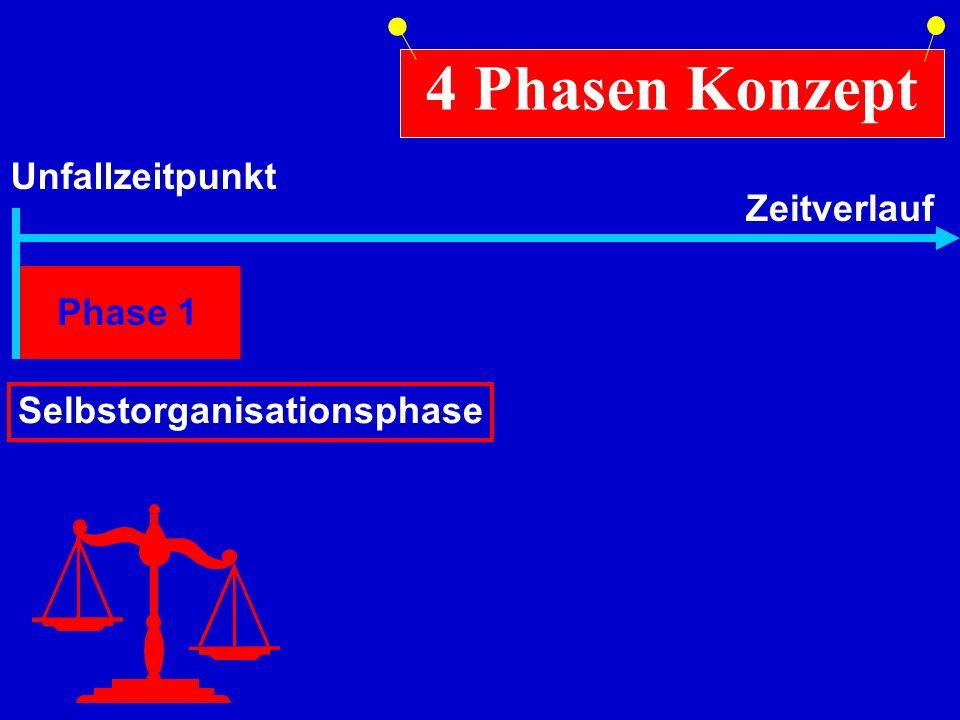 Phase 1 Selbstorganisationsphase 4 Phasen Konzept Unfallzeitpunkt Zeitverlauf