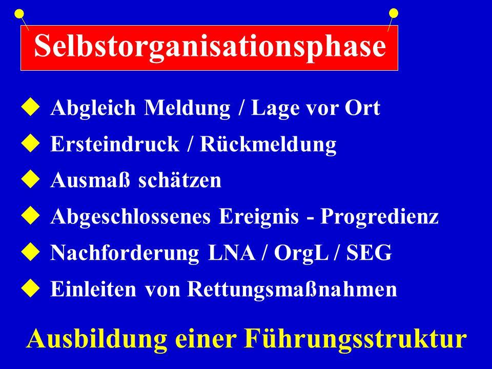 Selbstorganisationsphase  Abgleich Meldung / Lage vor Ort  Ersteindruck / Rückmeldung  Ausmaß schätzen  Abgeschlossenes Ereignis - Progredienz  N