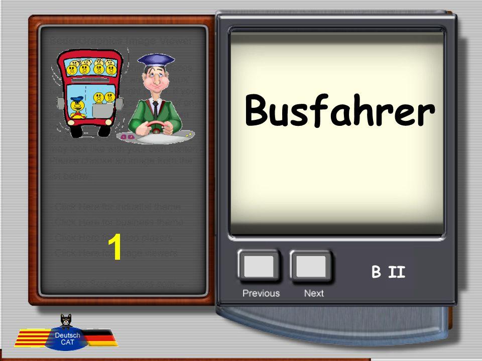 Busfahrer 1 B II
