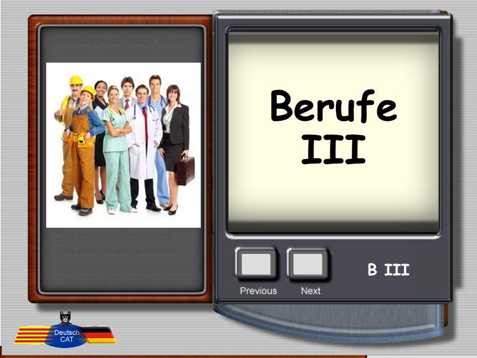 Berufe III B III