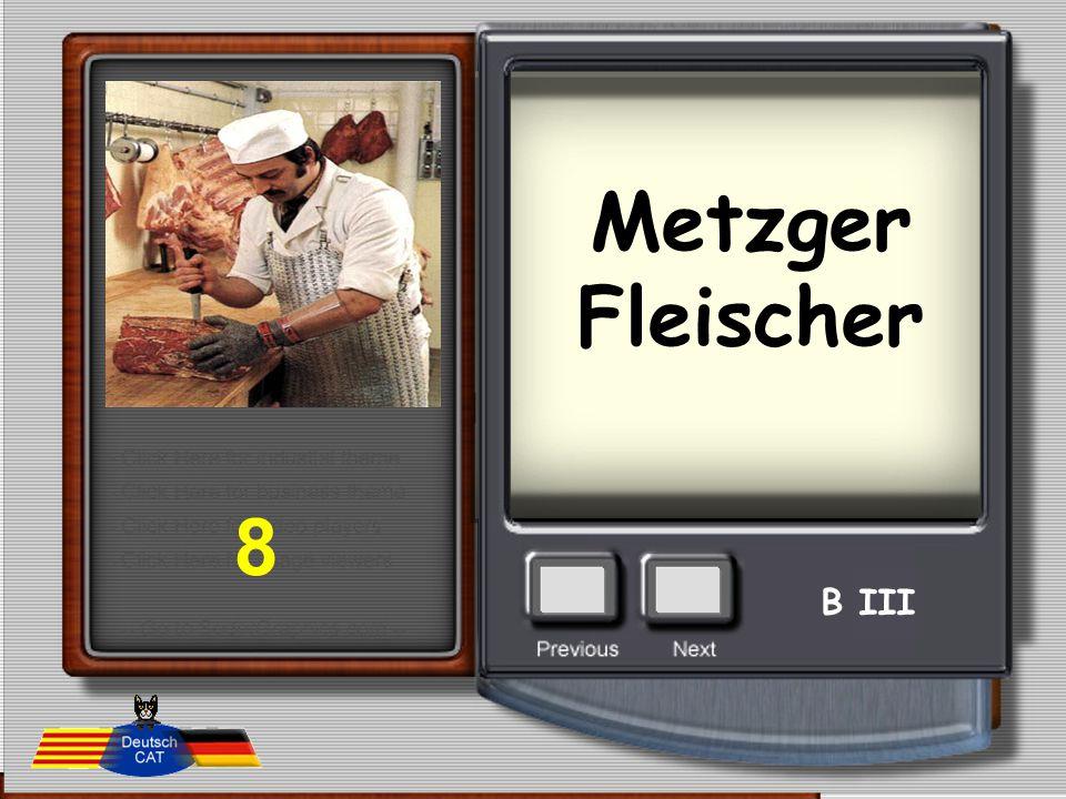 Metzger Fleischer 8 B III