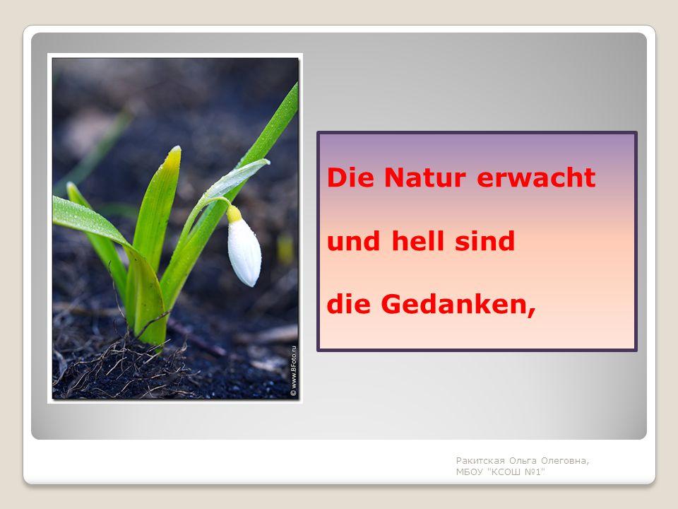 Ringsherum erwacht das Leben, Alle Pflanzen, Mensch und Tier.