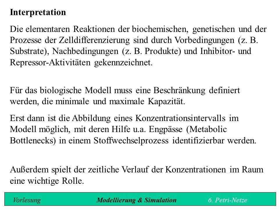 Interpretation Die elementaren Reaktionen der biochemischen, genetischen und der Prozesse der Zelldifferenzierung sind durch Vorbedingungen (z.