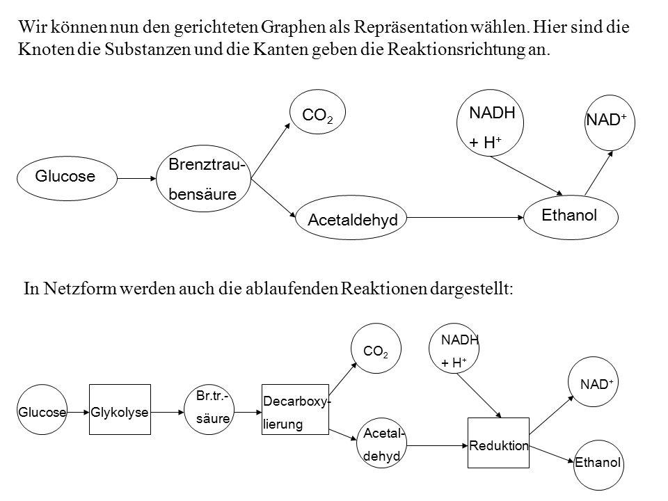 Wir können nun den gerichteten Graphen als Repräsentation wählen.