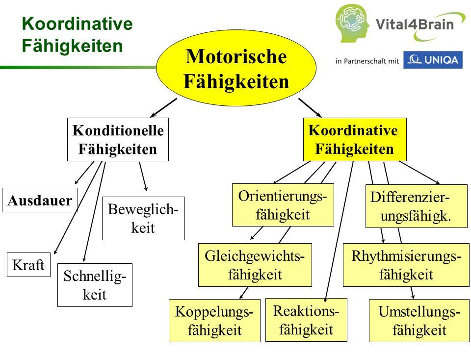 Chart 32 Motorische Fähigkeiten Konditionelle Fähigkeiten Koordinative Fähigkeiten Ausdauer Kraft Beweglich- keit Schnellig- keit Reaktions- fähigkeit