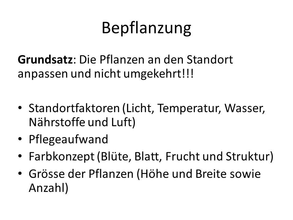 Bepflanzung Grundsatz: Die Pflanzen an den Standort anpassen und nicht umgekehrt!!! Standortfaktoren (Licht, Temperatur, Wasser, Nährstoffe und Luft)