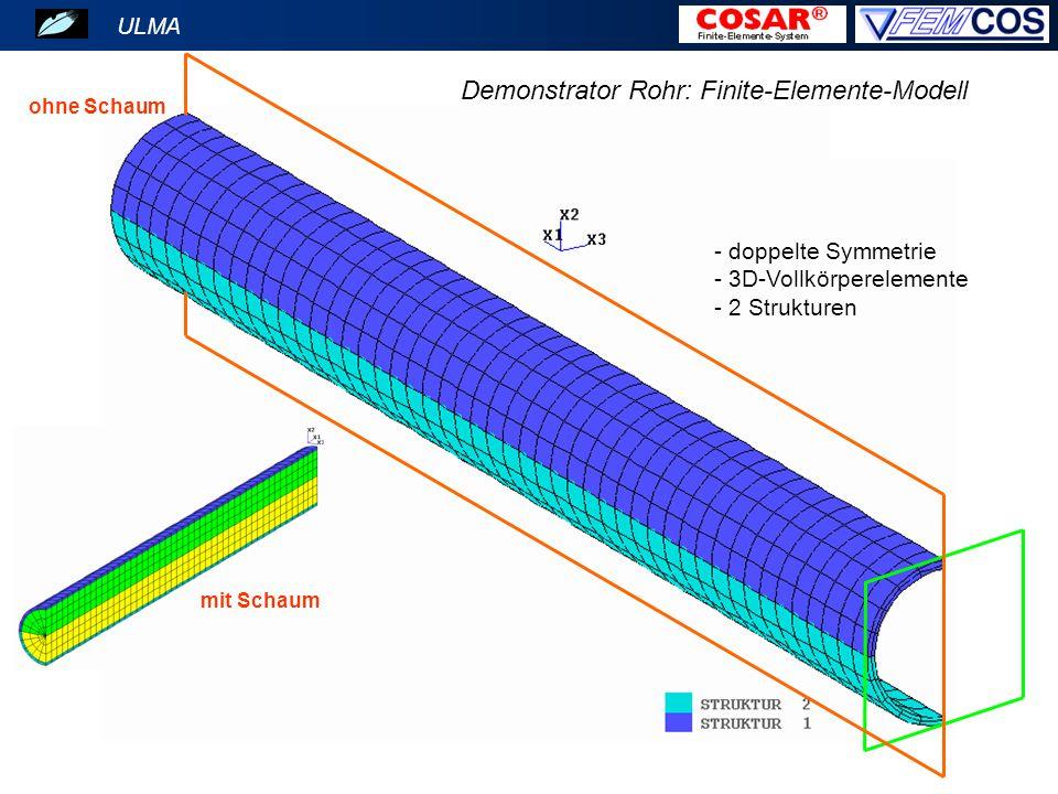- doppelte Symmetrie - 3D-Vollkörperelemente - 2 Strukturen ohne Schaum mit Schaum ULMA Demonstrator Rohr: Finite-Elemente-Modell