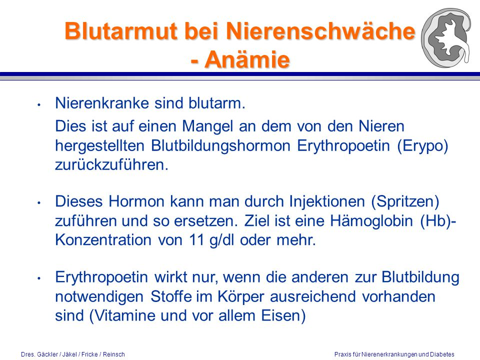 Dres. Gäckler / Jäkel / Fricke / Reinsch Praxis für Nierenerkrankungen und Diabetes Blutarmut bei Nierenschwäche - Anämie Nierenkranke sind blutarm. D