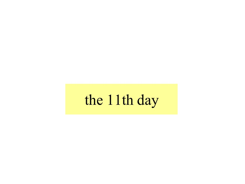 the 11th day