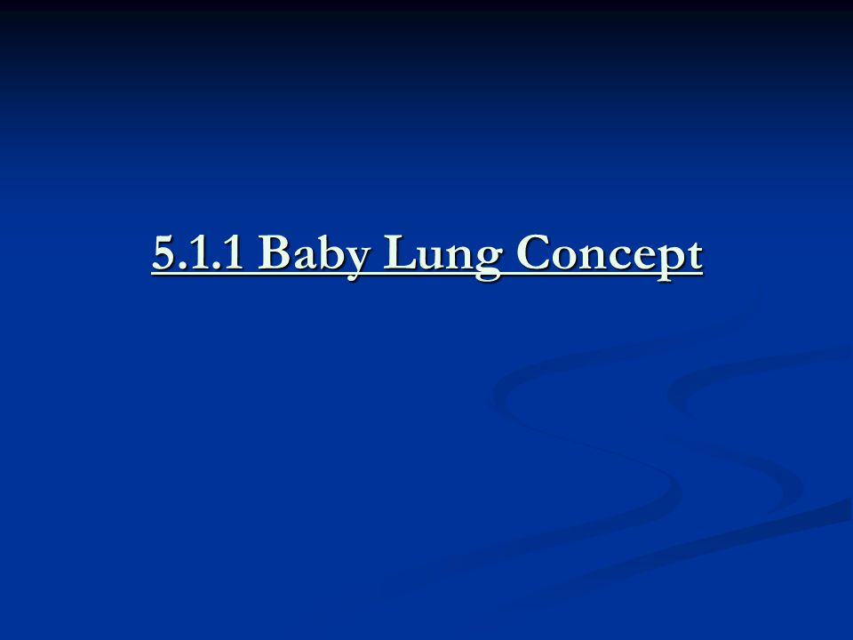 5.1.1 Baby Lung Concept