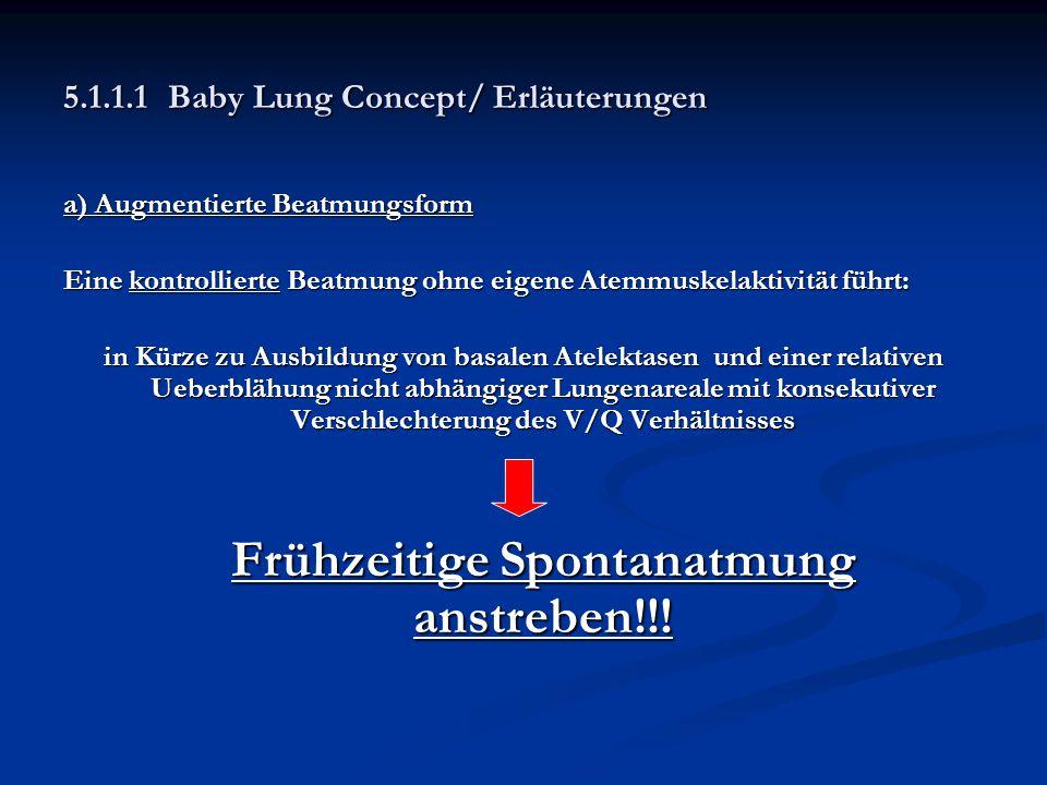 5.1.1.1Baby Lung Concept/ Erläuterungen a) Augmentierte Beatmungsform Eine kontrollierte Beatmung ohne eigene Atemmuskelaktivität führt: in Kürze zu A