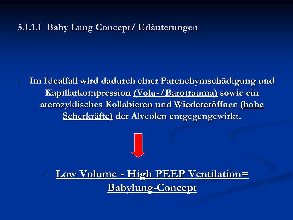 5.1.1.1Baby Lung Concept/ Erläuterungen - Im Idealfall wird dadurch einer Parenchymschädigung und Kapillarkompression (Volu-/Barotrauma) sowie ein ate