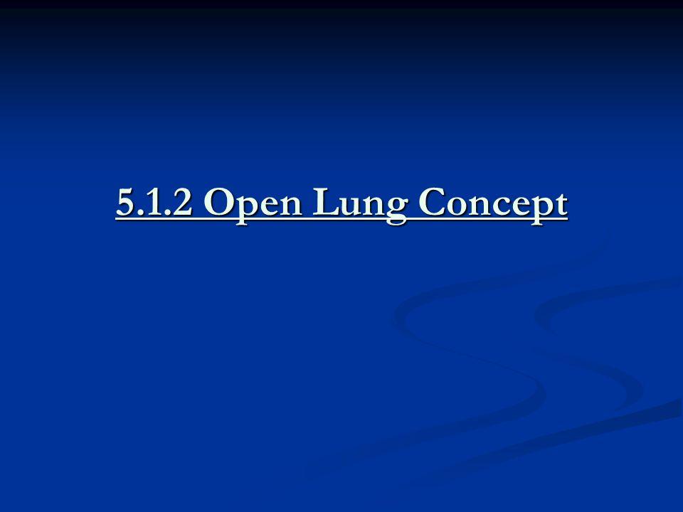 5.1.2 Open Lung Concept