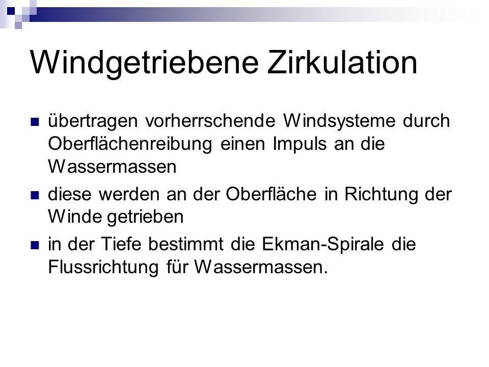 Windgetriebene Zirkulation übertragen vorherrschende Windsysteme durch Oberflächenreibung einen Impuls an die Wassermassen diese werden an der Oberfläche in Richtung der Winde getrieben in der Tiefe bestimmt die Ekman-Spirale die Flussrichtung für Wassermassen.
