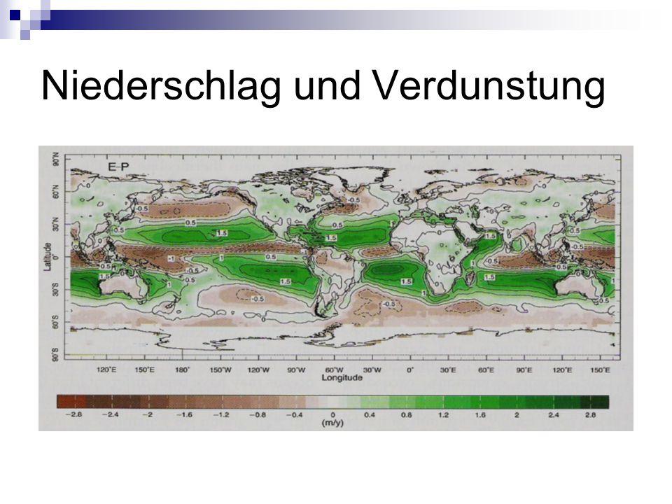 Wie sieht die gesamte globale Meeresströmung aus?