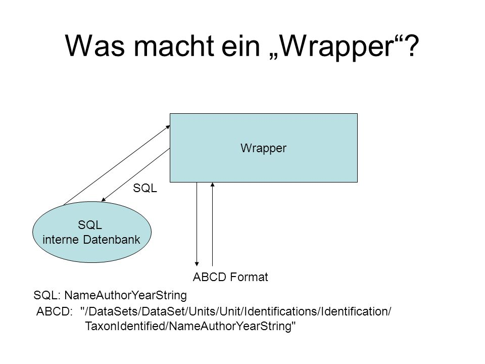 "Was macht ein ""Wrapper""? SQL interne Datenbank Wrapper SQL ABCD Format SQL: NameAuthorYearString ABCD:"