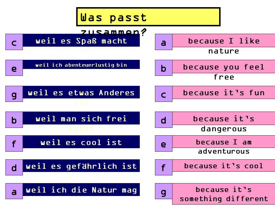 Ich werde ……… (I will ….) ReitenParagleit en Bergsteigen Motorrad fahren Snowboardi ng Kanu fahren Schreib 5 Sätze Fertig? Start thinking about why!!