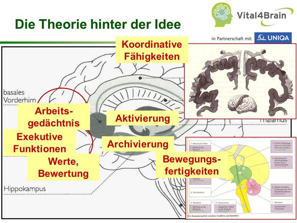 Chart 56 Koordinative Fähigkeiten Bewegungs- fertigkeiten Die Theorie hinter der Idee Arbeits- gedächtnis Aktivierung Exekutive Funktionen Werte, Bewe
