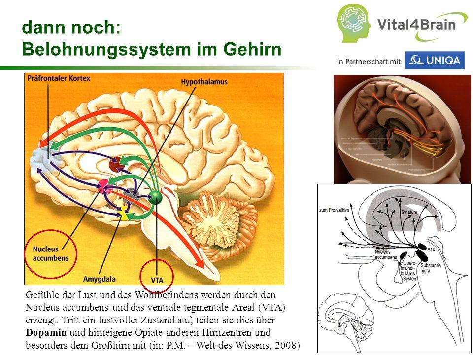 Chart 60 dann noch: Belohnungssystem im Gehirn Gefühle der Lust und des Wohlbefindens werden durch den Nucleus accumbens und das ventrale tegmentale A