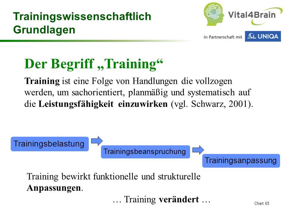 """Chart 65 Trainingswissenschaftlich Grundlagen Der Begriff """"Training"""" Training ist eine Folge von Handlungen die vollzogen werden, um sachorientiert, p"""