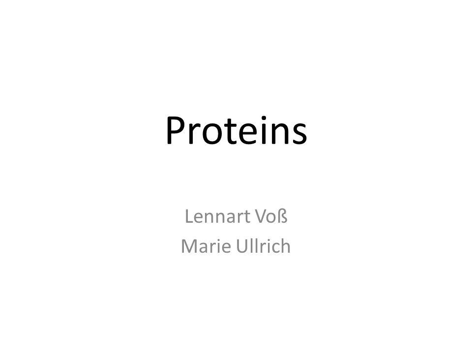 Proteins Lennart Voß Marie Ullrich