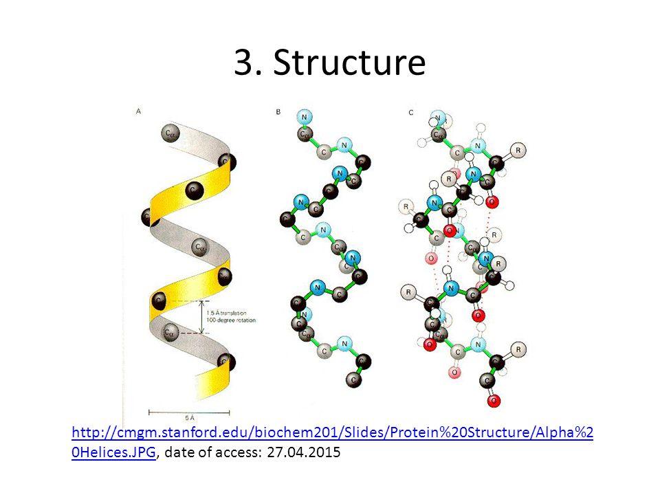 3. Structure http://cmgm.stanford.edu/biochem201/Slides/Protein%20Structure/Alpha%2 0Helices.JPGhttp://cmgm.stanford.edu/biochem201/Slides/Protein%20S